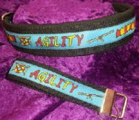 22-Agility